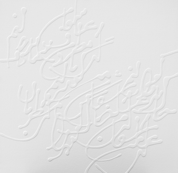Photo of the Desire series by artist Soheila Esfahani